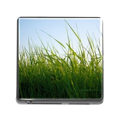 Grass Memory Card Reader with Storage (Square)