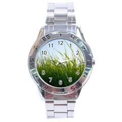 Grass Stainless Steel Watch (men s)