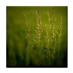 Grass Ceramic Tile
