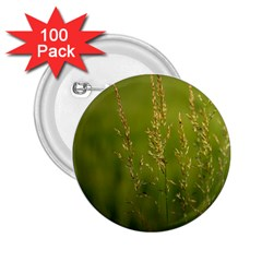 Grass 2 25  Button (100 Pack)