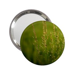 Grass Handbag Mirror (2 25 )