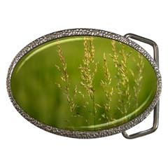 Grass Belt Buckle (Oval)