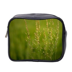 Grass Mini Travel Toiletry Bag (two Sides)