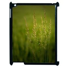 Grass Apple iPad 2 Case (Black)