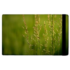 Grass Apple iPad 2 Flip Case