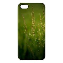 Grass iPhone 5S Premium Hardshell Case