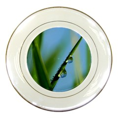 Waterdrops Porcelain Display Plate