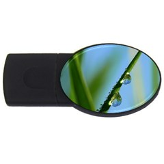 Waterdrops 4GB USB Flash Drive (Oval)
