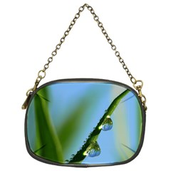 Waterdrops Chain Purse (Two Sided)