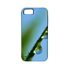 Waterdrops Apple iPhone 5 Classic Hardshell Case (PC+Silicone)