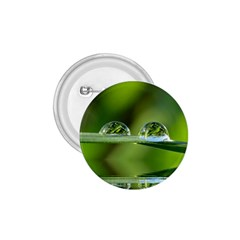 Waterdrops 1.75  Button