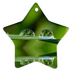 Waterdrops Star Ornament