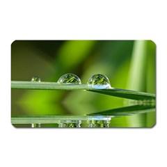 Waterdrops Magnet (rectangular)