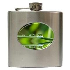 Waterdrops Hip Flask