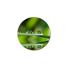 Waterdrops Golf Ball Marker 4 Pack
