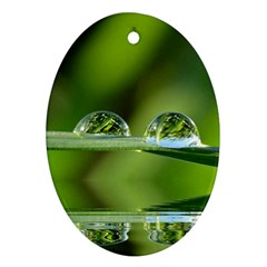 Waterdrops Oval Ornament (Two Sides)