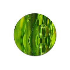 Green Bubbles  Magnet 3  (round)