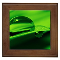 Green Drop Framed Ceramic Tile