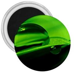 Green Drop 3  Button Magnet