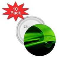 Green Drop 1 75  Button (10 Pack)