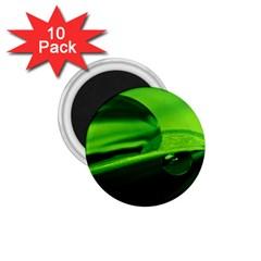 Green Drop 1 75  Button Magnet (10 Pack)
