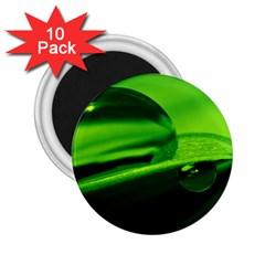 Green Drop 2.25  Button Magnet (10 pack)