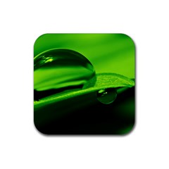 Green Drop Drink Coasters 4 Pack (Square)