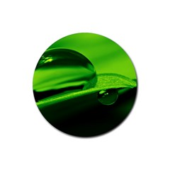 Green Drop Drink Coasters 4 Pack (Round)