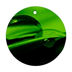 Green Drop Round Ornament (Two Sides)