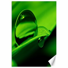 Green Drop Canvas 12  x 18  (Unframed)