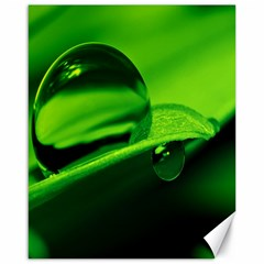 Green Drop Canvas 16  x 20  (Unframed)