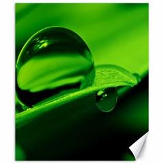 Green Drop Canvas 20  x 24  (Unframed)