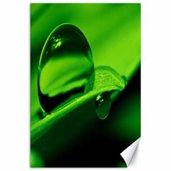 Green Drop Canvas 24  X 36  (unframed)