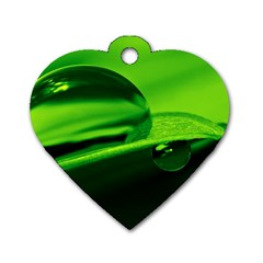 Green Drop Dog Tag Heart (One Sided)