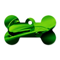 Green Drop Dog Tag Bone (One Sided)