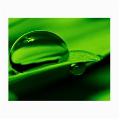 Green Drop Glasses Cloth (Small, Two Sided)