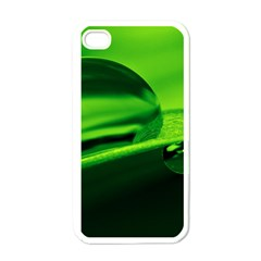 Green Drop Apple iPhone 4 Case (White)