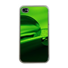 Green Drop Apple iPhone 4 Case (Clear)