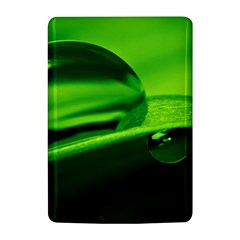 Green Drop Kindle 4 Hardshell Case