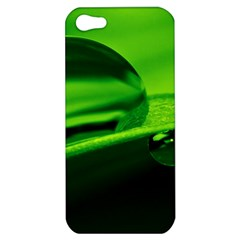 Green Drop Apple iPhone 5 Hardshell Case