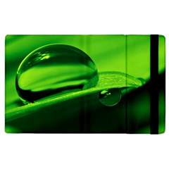 Green Drop Apple iPad 2 Flip Case