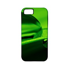 Green Drop Apple iPhone 5 Classic Hardshell Case (PC+Silicone)
