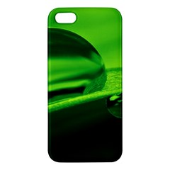 Green Drop iPhone 5S Premium Hardshell Case