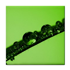 Green Drops Ceramic Tile