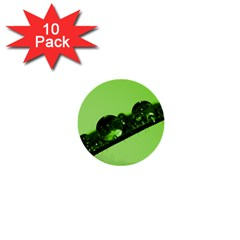 Green Drops 1  Mini Button (10 pack)