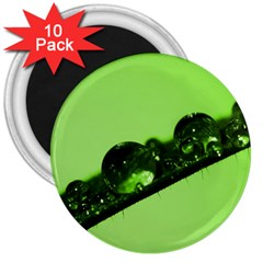 Green Drops 3  Button Magnet (10 pack)