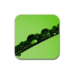 Green Drops Drink Coasters 4 Pack (square)