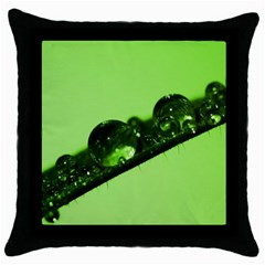 Green Drops Black Throw Pillow Case