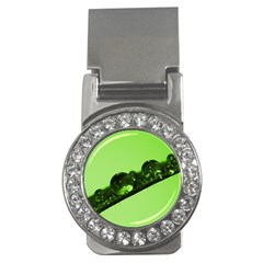 Green Drops Money Clip (CZ)
