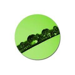 Green Drops Magnet 3  (Round)